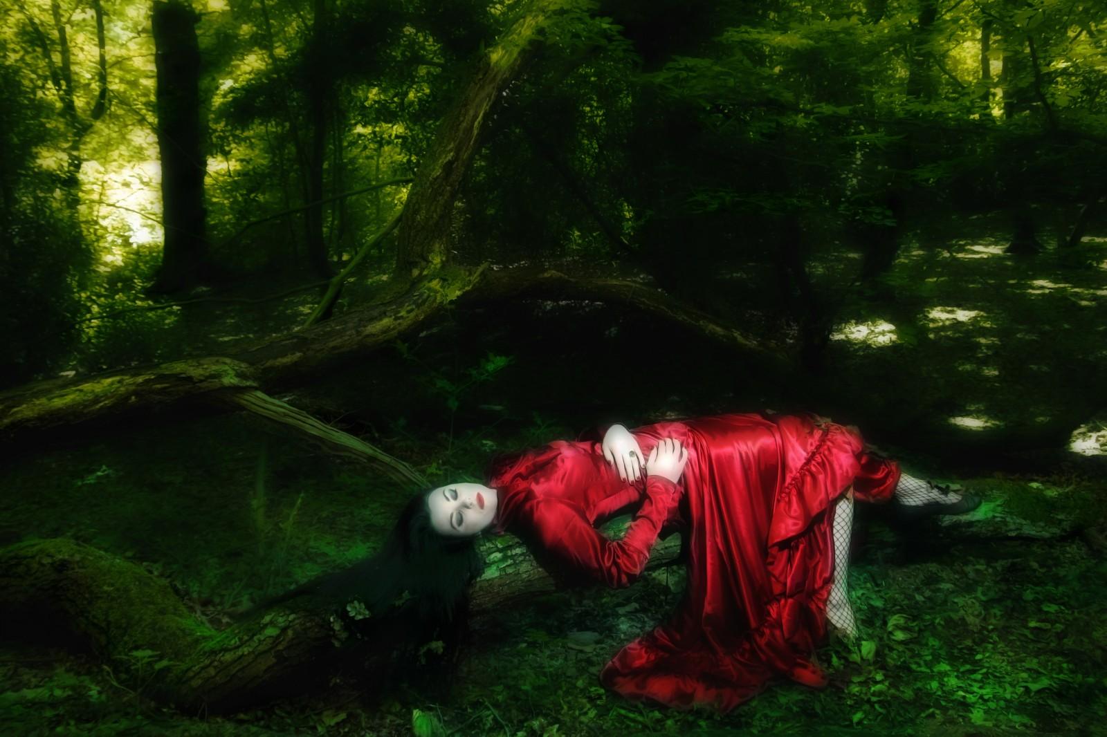 mm-woods-final